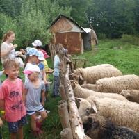 Wakacyjnie w przedszkolu - Skansen w Nadolicach Wielkich-183